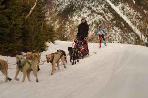 Závod Ledová jízda